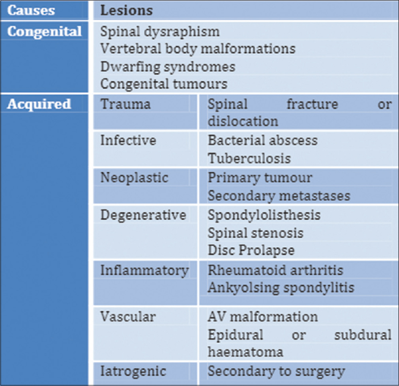 Figure 1: Table of list of causes of cauda eauina syndrome